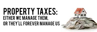 Property Tax accountants